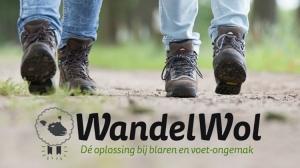 WandelWol ook te koop bij Attent Qi